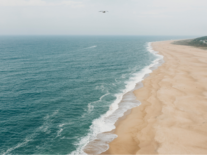 beach overview image with ocean and sand